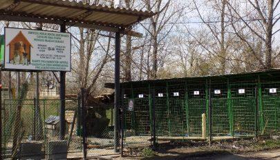 Tettre kész állatbarátok