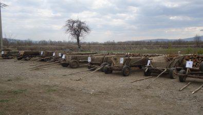 Erdeink húzzák a csíkot