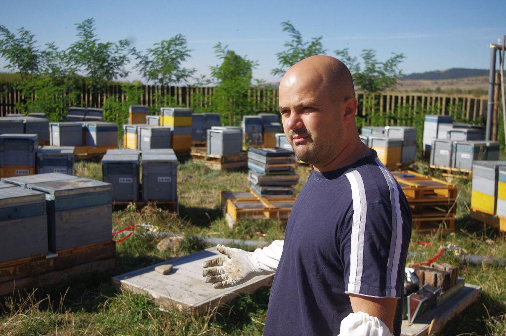 Még remélnek a méhészek