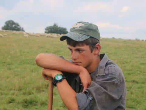 Egy ifjú pásztorlegény