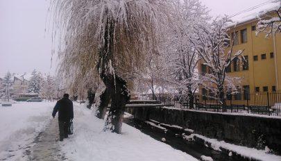 Száraz ágat a hó is húzza