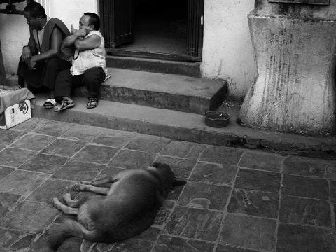Nepál értékei a galériában