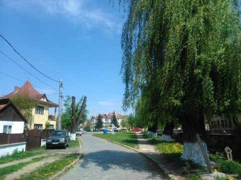 Tavaszi nagytakarítás Kovásznán