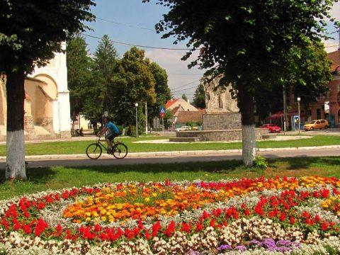 Virágot a városnak