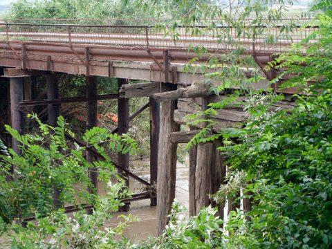 Új híd Bitának