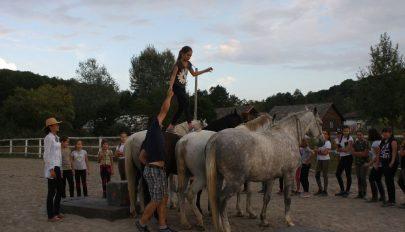 A ló szeretete