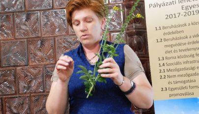 """Fűben, fában orvosság"""