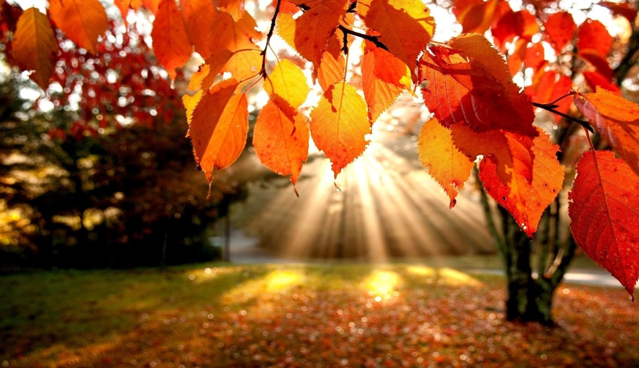 Felmelegedés, szép őszi idő várható a következő két hétben