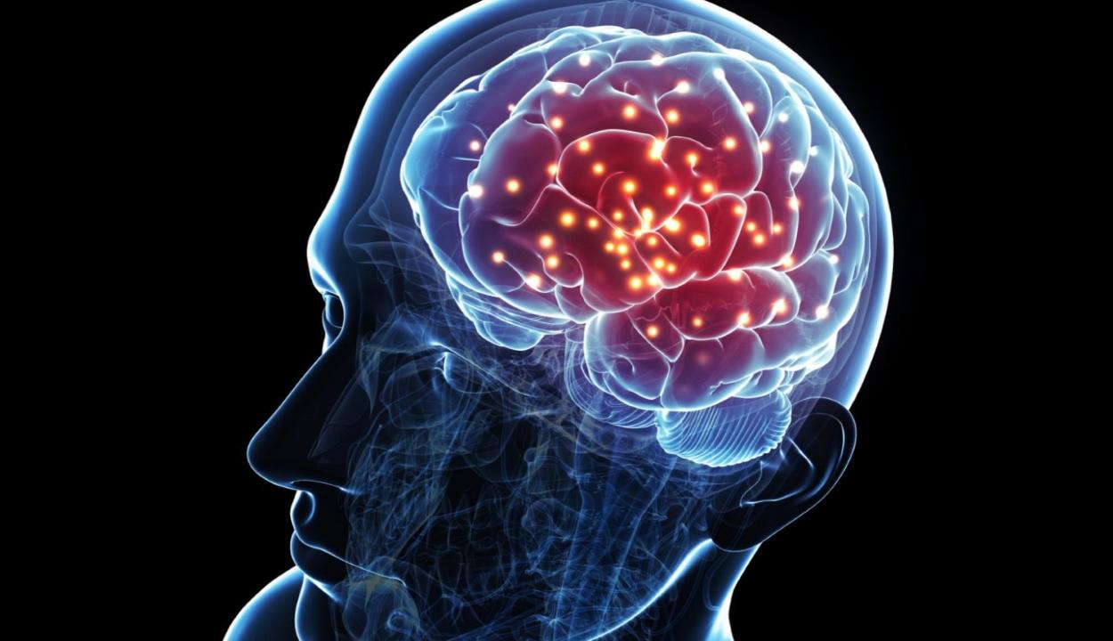 Összekötötték három ember agyát