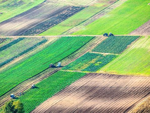 A román termőföldek 40 százaléka külföldi kézben van