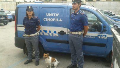 Ötezer eurós vérdíjat tűzött ki egy kutya fejére az olasz maffia