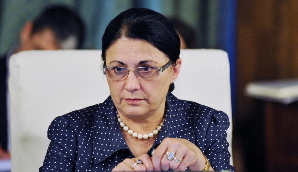 Andronescu: Március 30-áig a parlament elé kerül az új tanügyi törvény tervezete