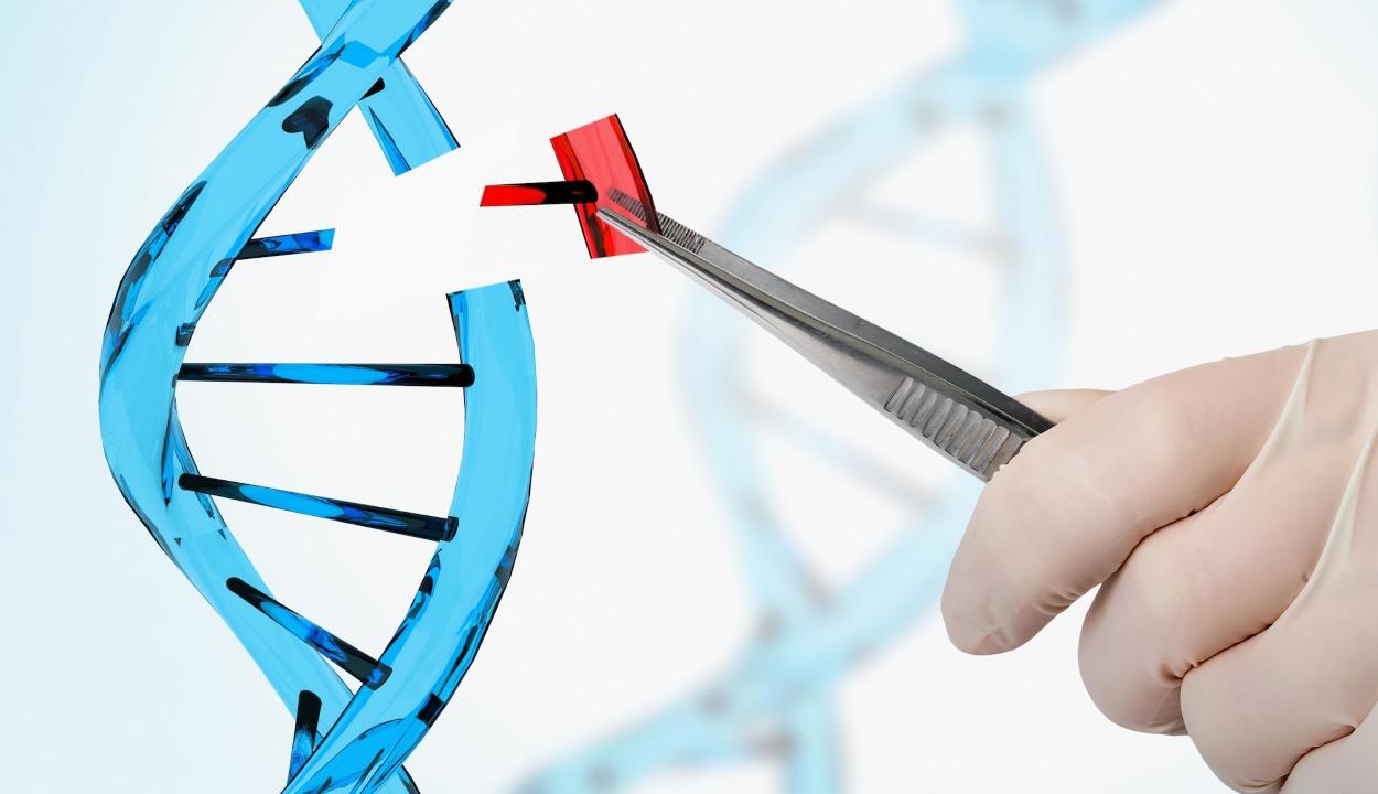 Megszülettek az világ első génmódosított ikrei Kínában