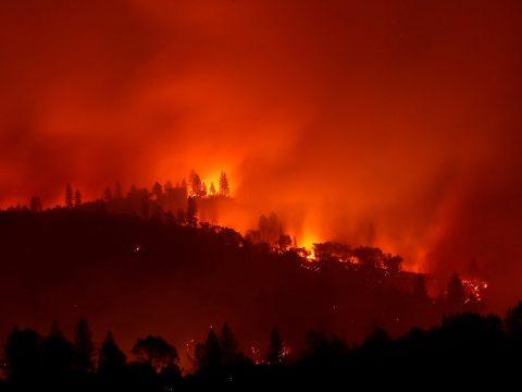 Tovább emelkedett a kaliforniai erdőtüzek áldozatainak száma
