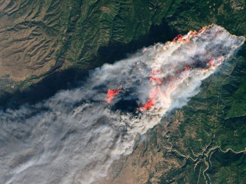 Huszonháromra nőtt a kaliforniai tűzvész halálos áldozatainak száma