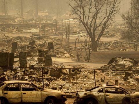 Katasztrófa sújtotta területté nyilvánította egész Kaliforniát Donald Trump