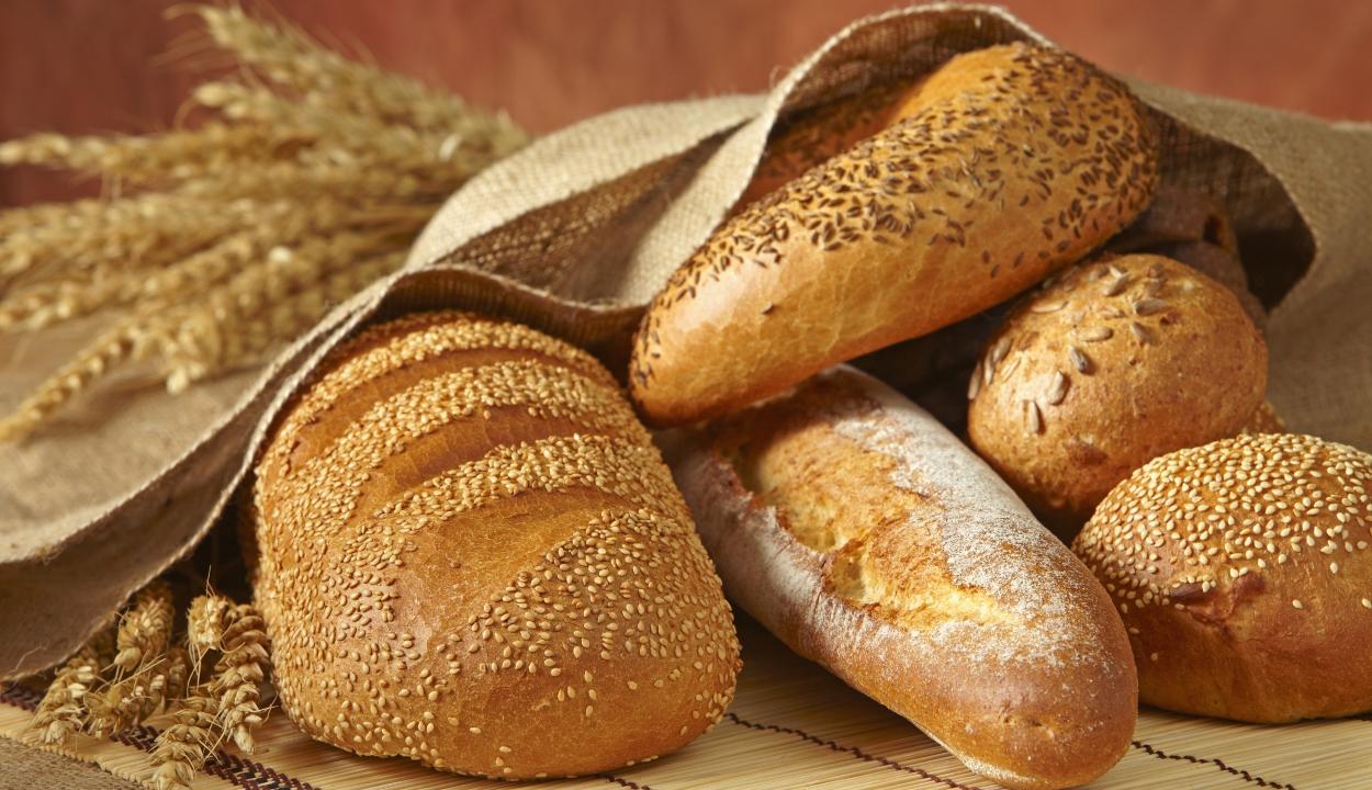 Már novemberben drágul a kenyér