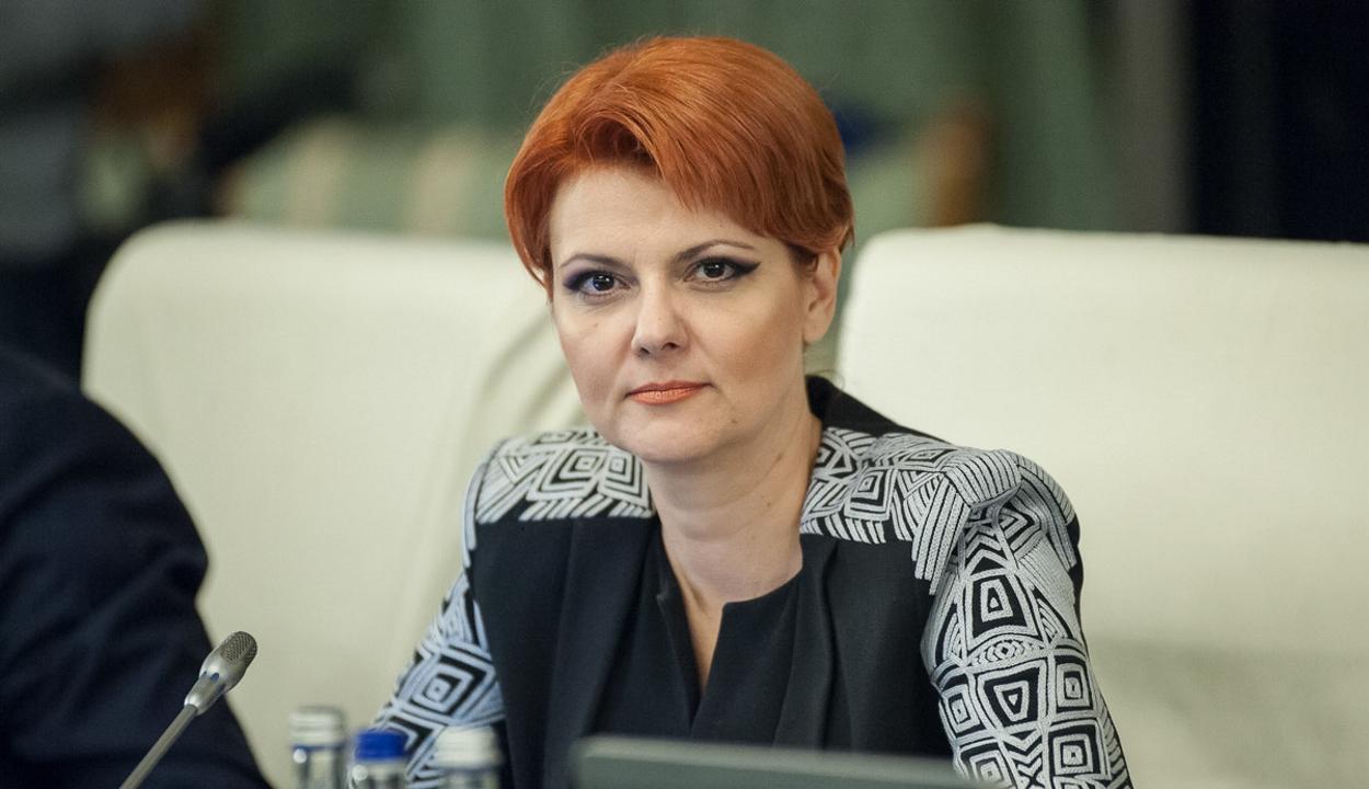 Lia Olguţa Vasilescut javasolják fejlesztési miniszternek