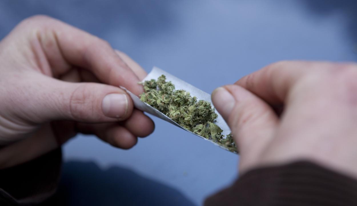 Háromszorosára növeli a hererák kockázatát a marihuána