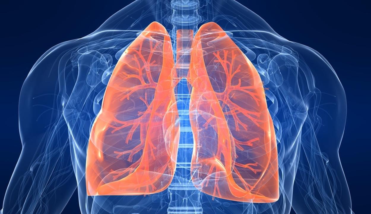 """A tüdő """"varázslatos"""" gyógyulásra képes a dohányzás abbahagyása után"""