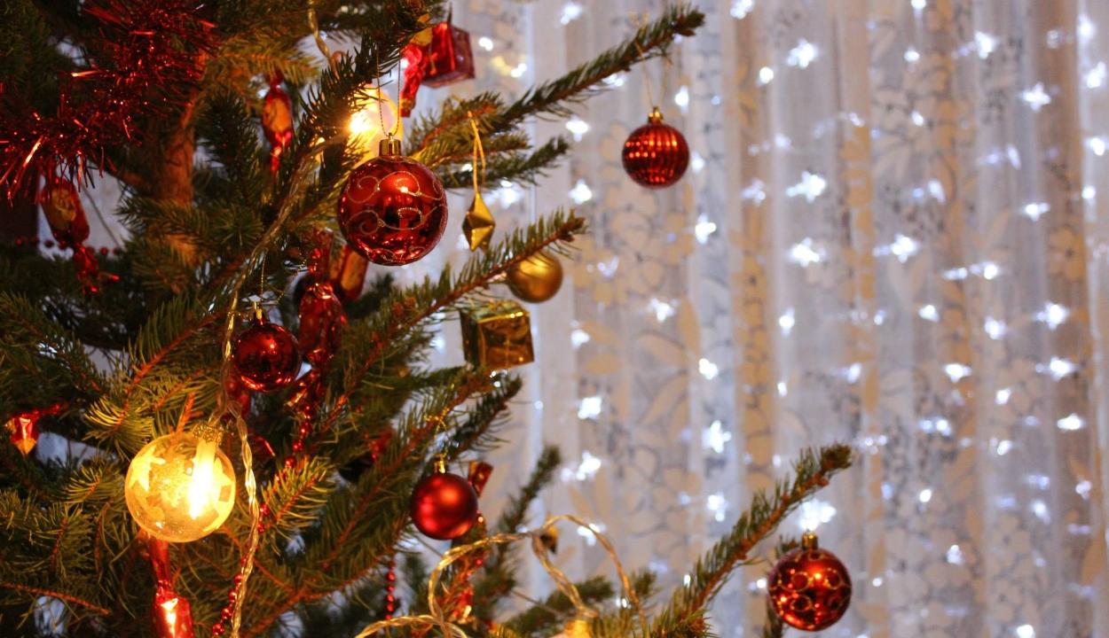 Miért állítunk fenyőt karácsonykor?