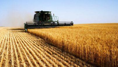 Vidékfejlesztési program: 445 millió euró áll a gazdák rendelkezésére
