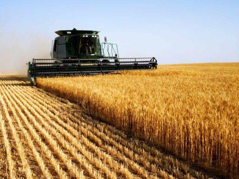 Csaknem 9 milliárd euró uniós támogatást kaptak a romániai gazdák az elmúlt két évben