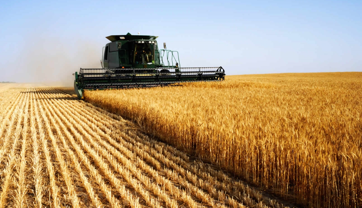 Dăncilă: több mint 2,2 milliárd eurót kapott idén Románia mezőgazdasági támogatásokra