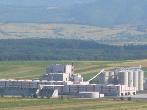 Félezer köbméternyi faanyagot foglaltak le a Schweighofer rétyi üzeménél