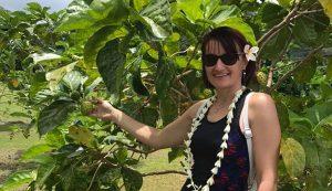 Tahitin terem a noni – a sziget lakói ennek begyűjtésével foglalkoznak