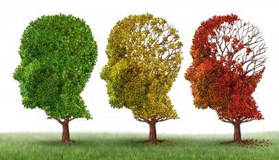 A demenciát korai fázisban kiszűrő szoftvert fejlesztenek magyar kutatók