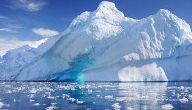 Életre bukkantak az Antarktisz mélyén