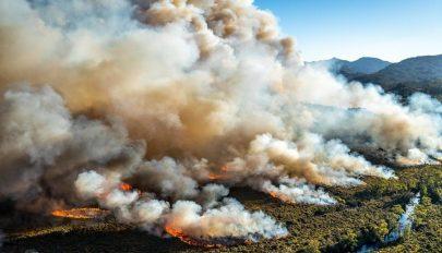 Eddig ötmillió hektárt pusztítottak el a bozóttüzek Ausztráliában