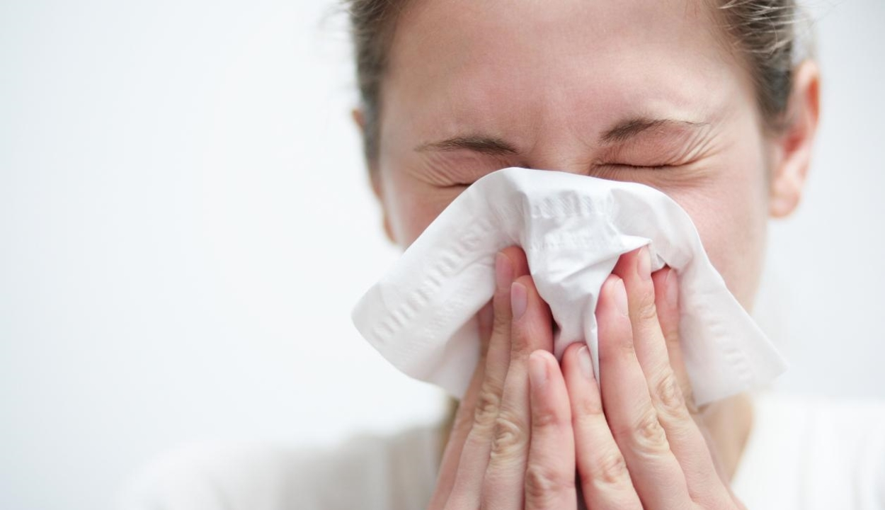 Csökkent az influenzavírus okozta fertőzések száma az elmúlt héten