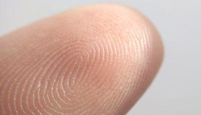 Miért van ujjlenyomatunk?