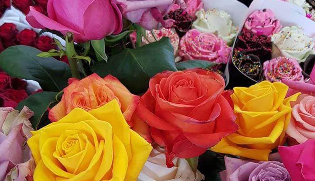 Vörös rózsa dupla áron