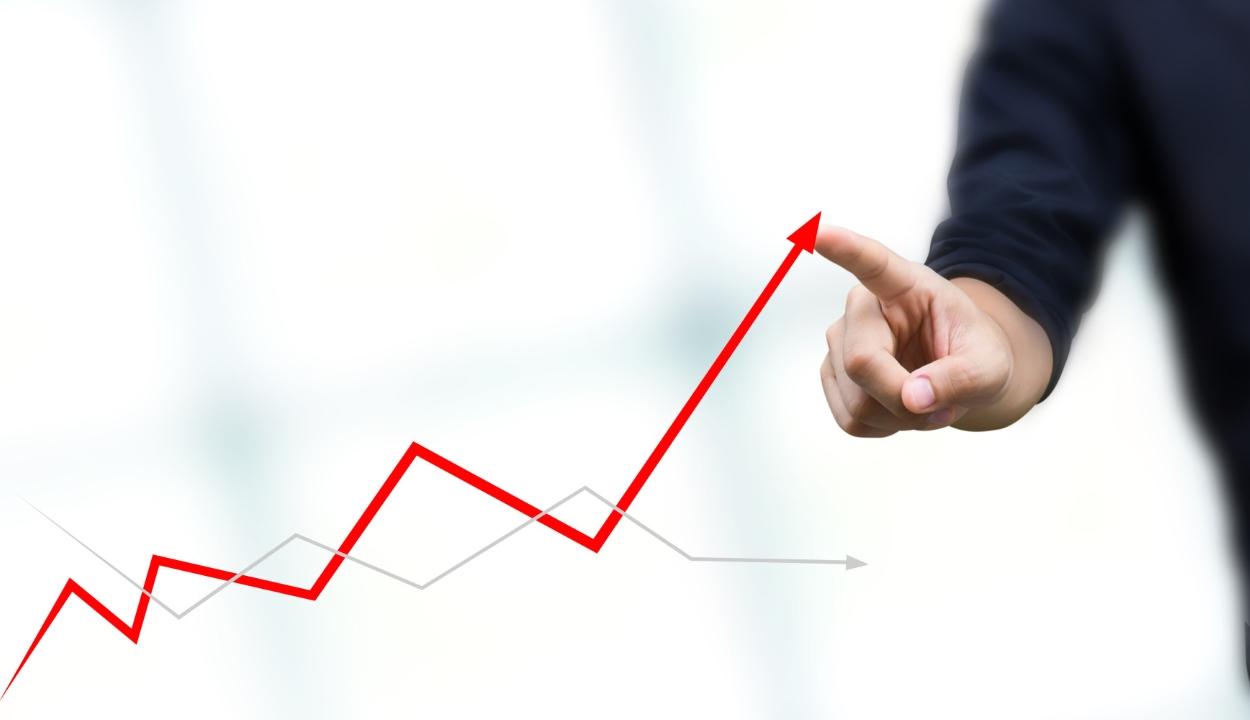 Változatlanul 3,9 százalékra becsüli az INS a tavalyi GDP-csökkenést