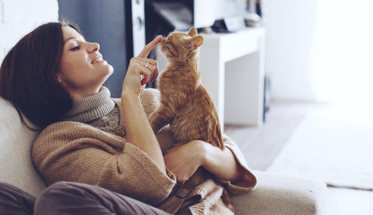 A háziállatok sokat segítenek a bezártság elviselésében egy felmérés szerint
