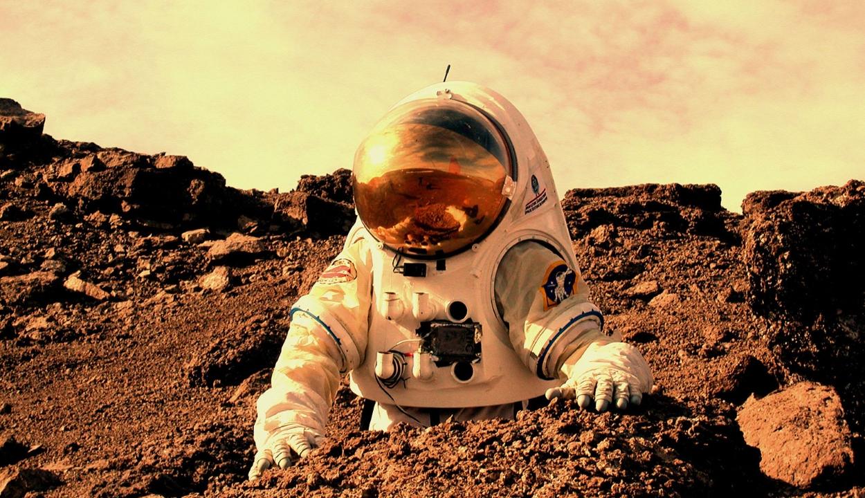 Bohócot is vinnének az első Mars-misszióval