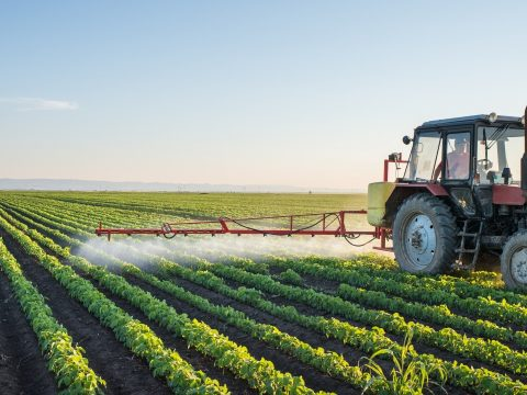 Kedvezményes hitelhez juthatnak azok a gazdák, akiknek tevékenységét hátráltatta a járvány