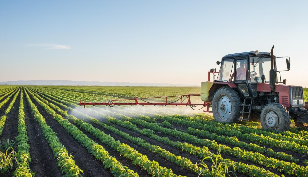 Mezőgazdasági területeket utalnak ki a fiatal gazdáknak