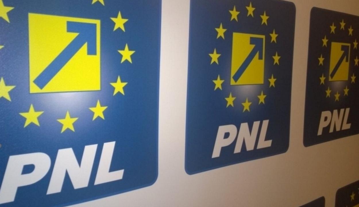 30 százalékos eredmény elérését vállalja a PNL az európai parlamenti választásokon