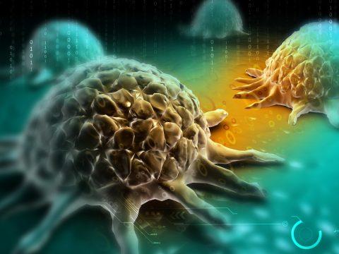 A mellrák nem egyetlen betegség, hanem tizenegy altípusa van