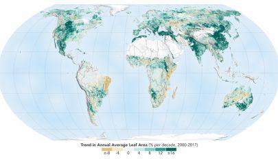 Sokkal zöldebbé vált a Föld az elmúlt húsz évben