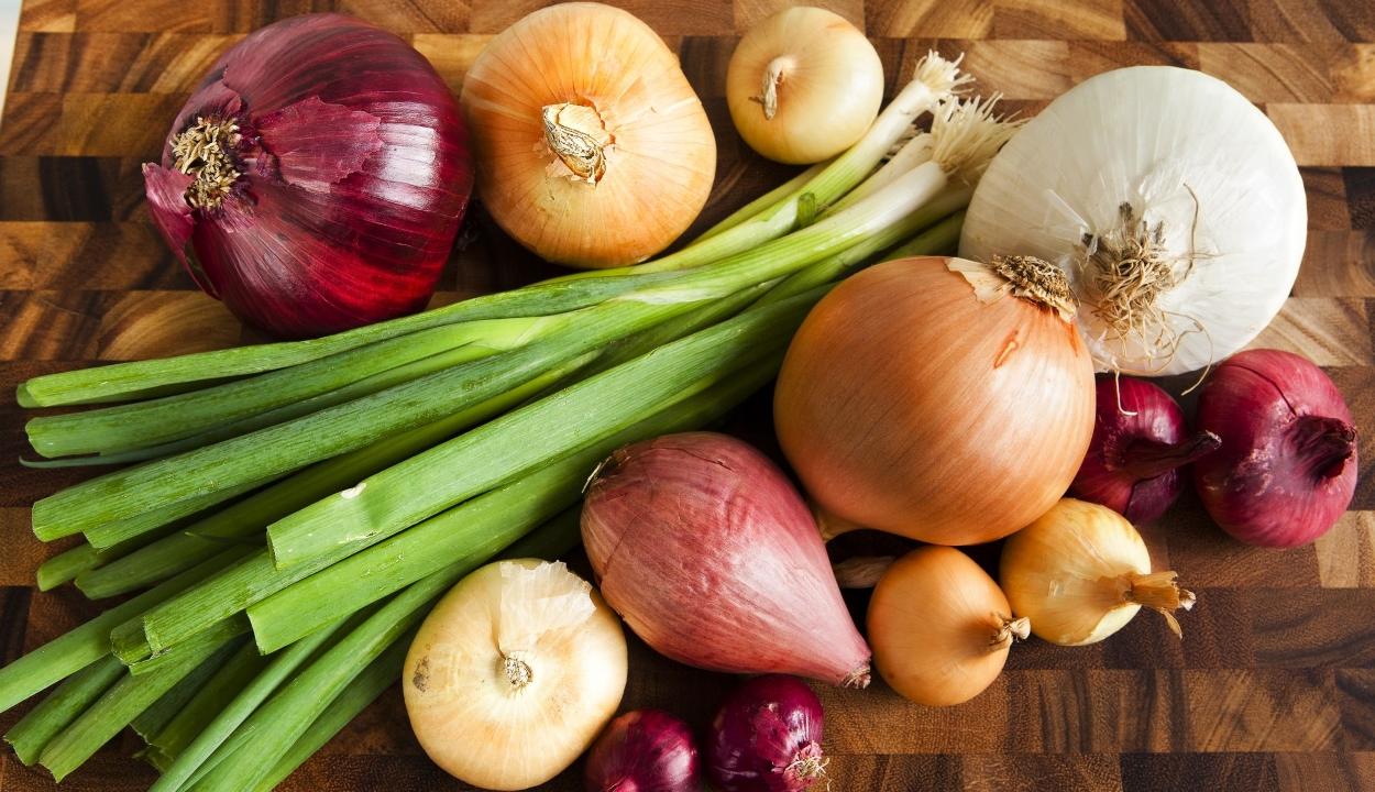 A hagymafélék fogyasztása csökkentheti a kolorektális rák kockázatát