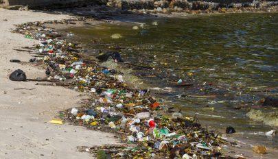 A halálozások és betegségek negyedét a környezetszennyezés okozza