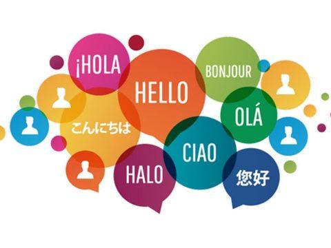 Mintegy 1,5 megabájt adatot foglal el az agyban a nyelvismeret