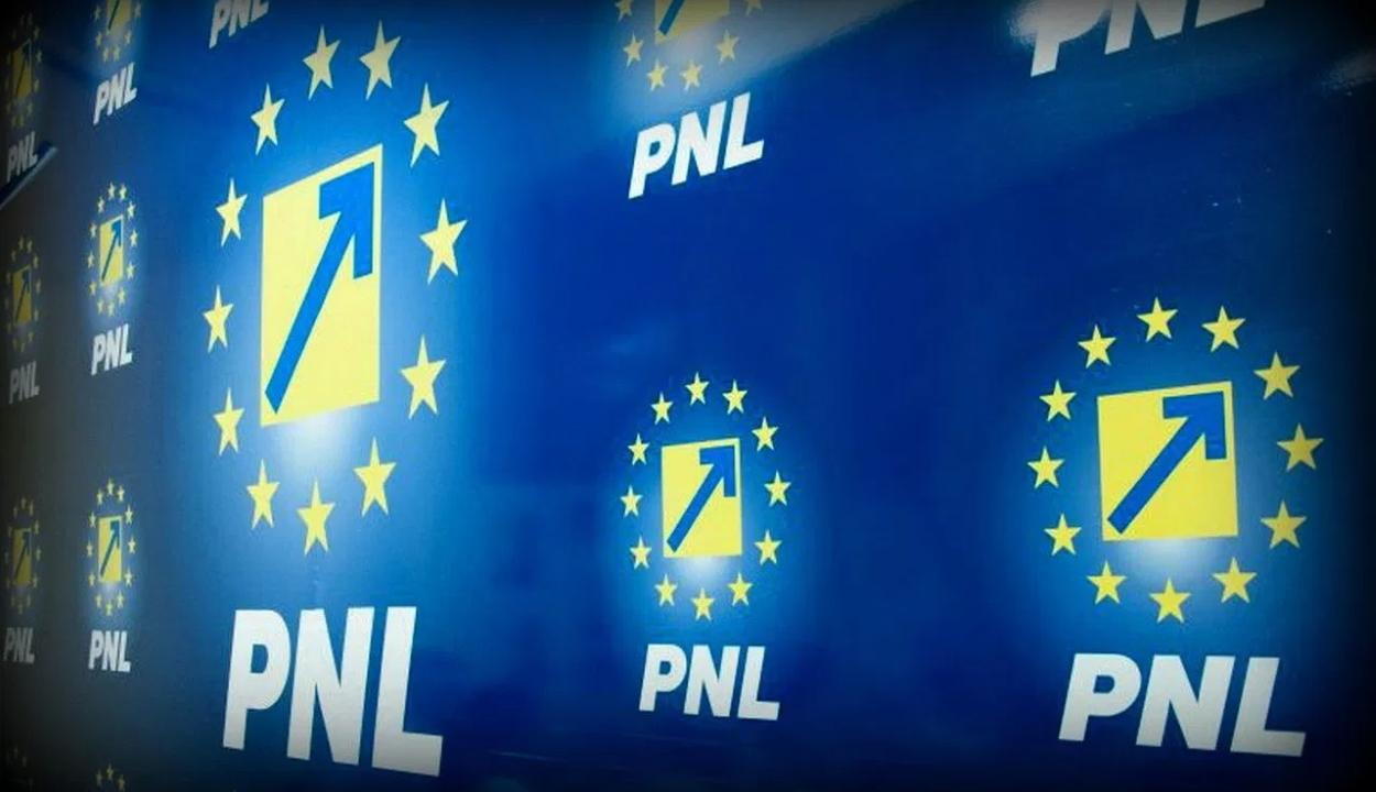 Dragnea képviselői mandátumának érvénytelenítését kéri a PNL