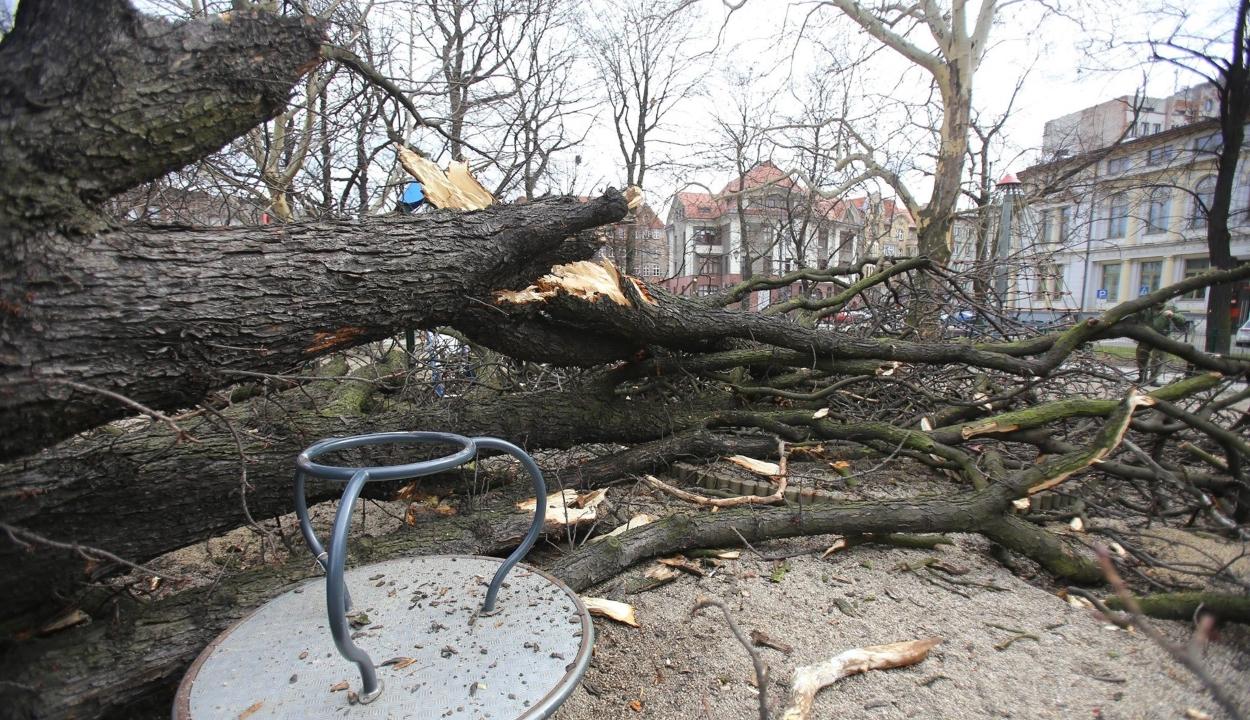 Pusztító vihar söpört végig Európán, több százezren maradtak áram nélkül
