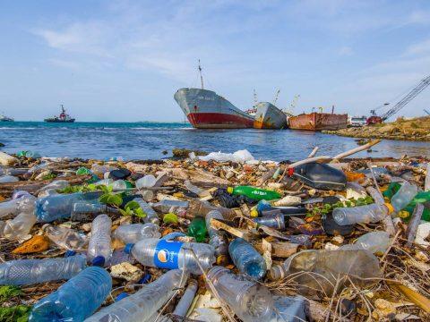 Nyolcmillió tonna műanyaghulladék kerül az óceánokba évente